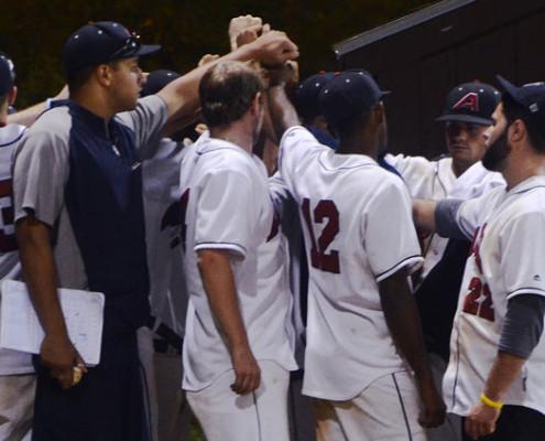 New Boston Park League Baseball Teams Needed for 2016